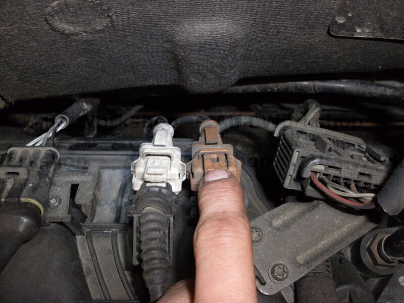 <p>Remove the engine top cover for ease of access and then disconnect brown plug on the rear of the inlet manifold.