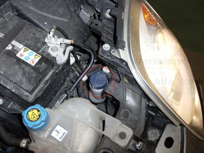 <p>On a MiTo the screen wash bottle is just behind the left hand headlamp (circled in the photo)