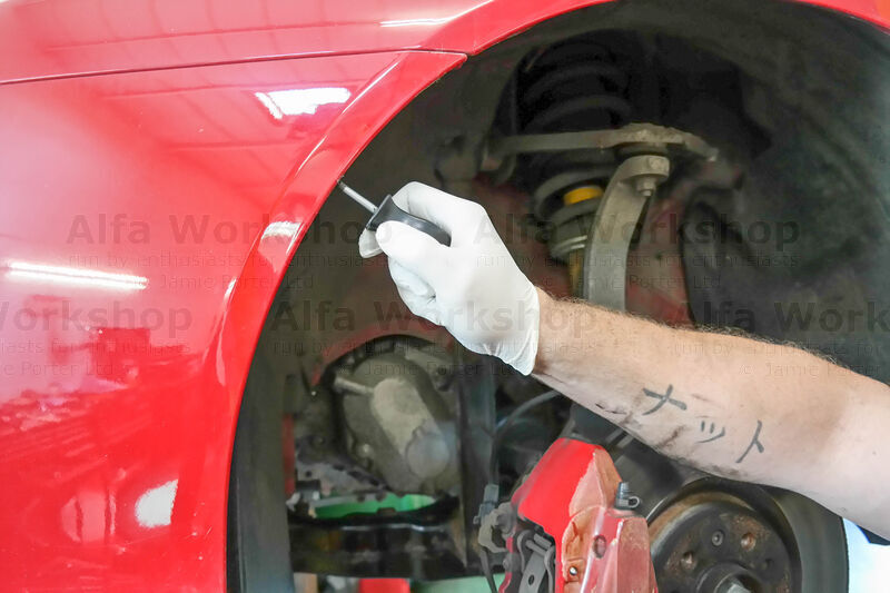 <p>Undo the two Phillips screws on the wheel arch liner,