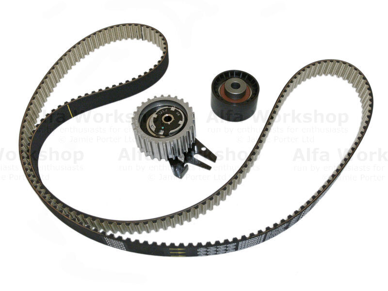 <p>Replace cam belt, idler and tensioner.</p><p>Cam belt and water pump replacement.